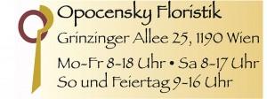 Blumen Opocensky